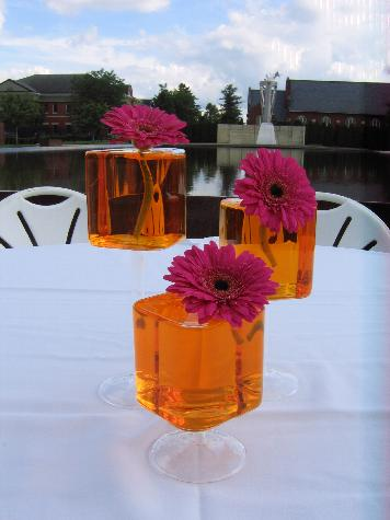 Stilt vases with orange water and bright pink gerbera daisies. Wedding at Fort Des Moines Museum.